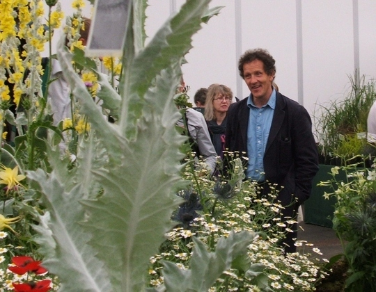 Would you like dates of more tv garden shows grows on you for Gardening programmes on tv