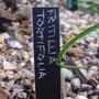Plant_label