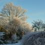 Snow_january_2013_003