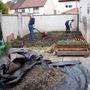 Spring_new_garden_010