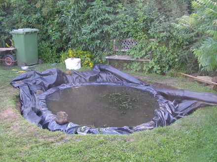 Replacing A Pond Liner And Creating A New Pond Grows On You