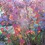 Physocarpus_opulifolius_diabolo_autmn_foliage_2010