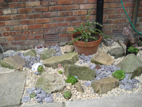 Small Garden Rockery Ideas Container Gardening Ideas