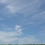 Lavender_fields_24.7.11_024_blue_sky_and_the_wispy_clouds_lp