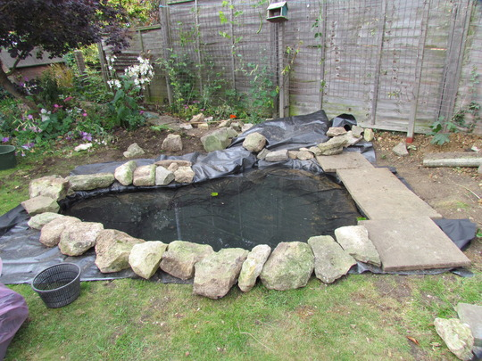 Pond work weekend grows on you for Garden pond edging