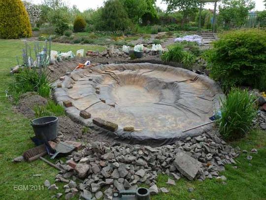 Refurbishing The Wildlife Pond Grows On You
