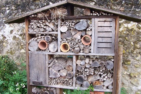 Wildlife habitat for hibernating bees and insects