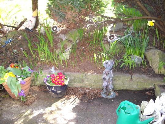 My_Garden_2009_062.jpg