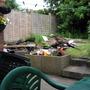 My_Garden_2009_224.jpg