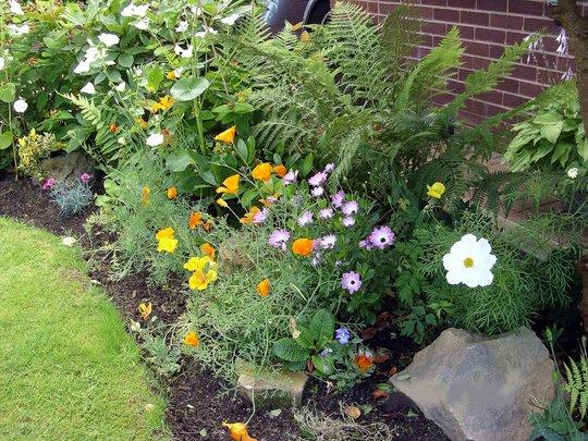 Front Garden Rockery Border Grows On You