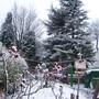 Rear Garden under Snow - 2008
