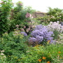 Walled Garden border