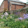 more of the walled garden