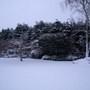 Snowy Day 1