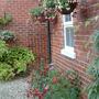 Garden_210709