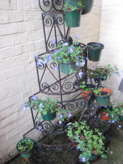 Old Plant Stand from the Flower Shop