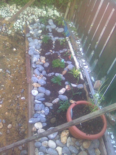 Raised bed by home made fence