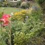 Front garden 1st August