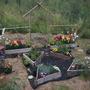Main Garden/Compass Garden