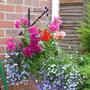 Garden_028.jpg