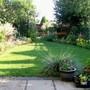 My Garden August 2009