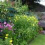 boarder on left side of garden
