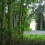 Ham Lands Nature Reserve
