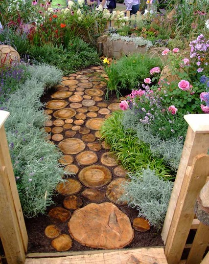 Log path at Shrewsbury Flower show