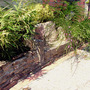 stone seat (phyllostachys)