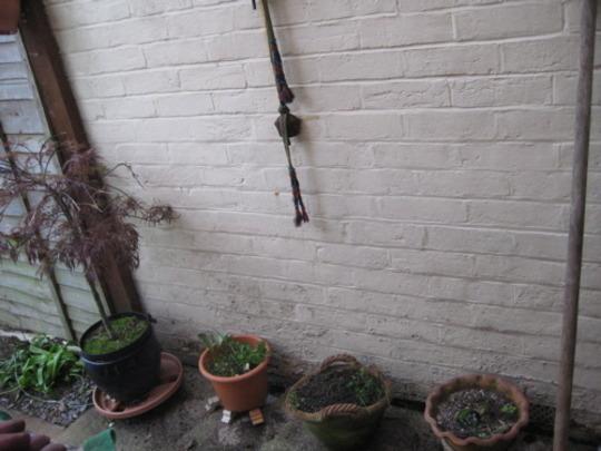 backdoor pots