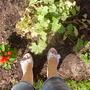 Gardening Shoes!!