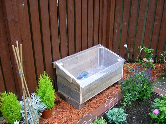 homemade coldframe