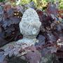 Vitis vinifera 'Purpurea' (Vitis vinifera 'Purpurea')