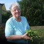 my mam Val picking our runner beans