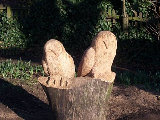 owls wisbech park