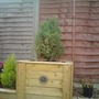Decking_tower_with_conifer