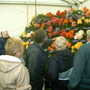 Shrewsbury Flower Show 2005