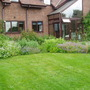 My garden (Geranium pyrenaicum (Hedge Cranesbill))