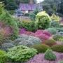 Garden_view_4
