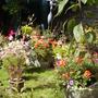 Garden_sept_09