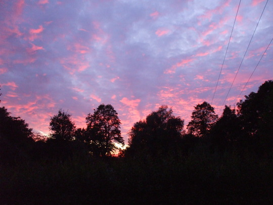 Brilliant sunset over the Allotman/Allotgirls's beautiful patch