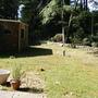Before (Back Garden)
