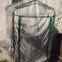mini_greenhouse.jpg