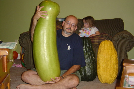 another picture of zucca gourd and vegetable marrows