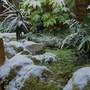 The stream on ice...