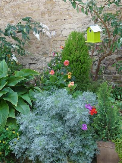 September garden pic.