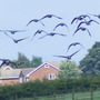 August_2009_183
