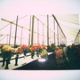 A picture of Shrewsbury Flower Show - pre digital camera