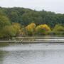 Newmiller dam again