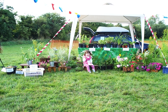 Little Elsie selling perennials in aid of dog rescue :o)